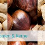 Powerfood: Nüsse, Samen & Kerne Teil 3