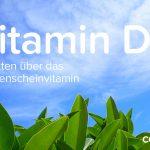 Vitamin D – 5 Fakten, die du über das Sonnenscheinvitamin wissen musst